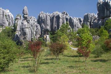2010-0289.jpg